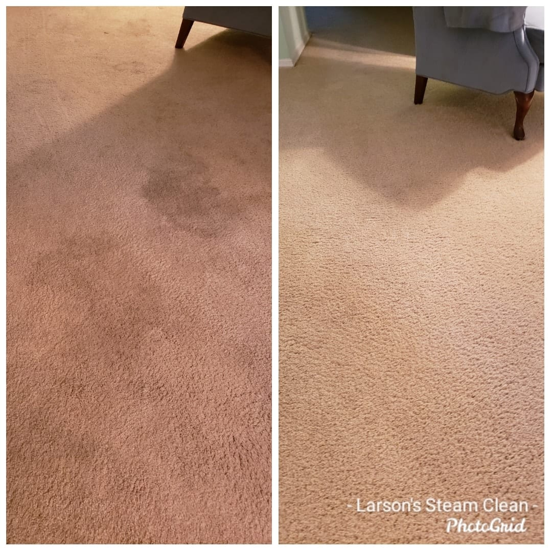 Whether a single room or an entire house full of carpet we are your one stop source for all your carpeting, upholstery, and rug cleaning needs.  For your lovable furry pets we can treat your carpet to remove urine and feces spots and deodorize to remove the smells.  We have and use specialty tools to make sure we get all the way to the base of your carpet so that it is not just the surface that is clean but the entire fiber of your carpeting. We have the ability to clean, disinfect, and deodorize the carpeting in your home as well as the option of applying a fabric protector that prevents future staining.